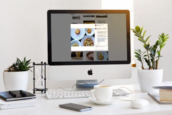 social media restaurant fred